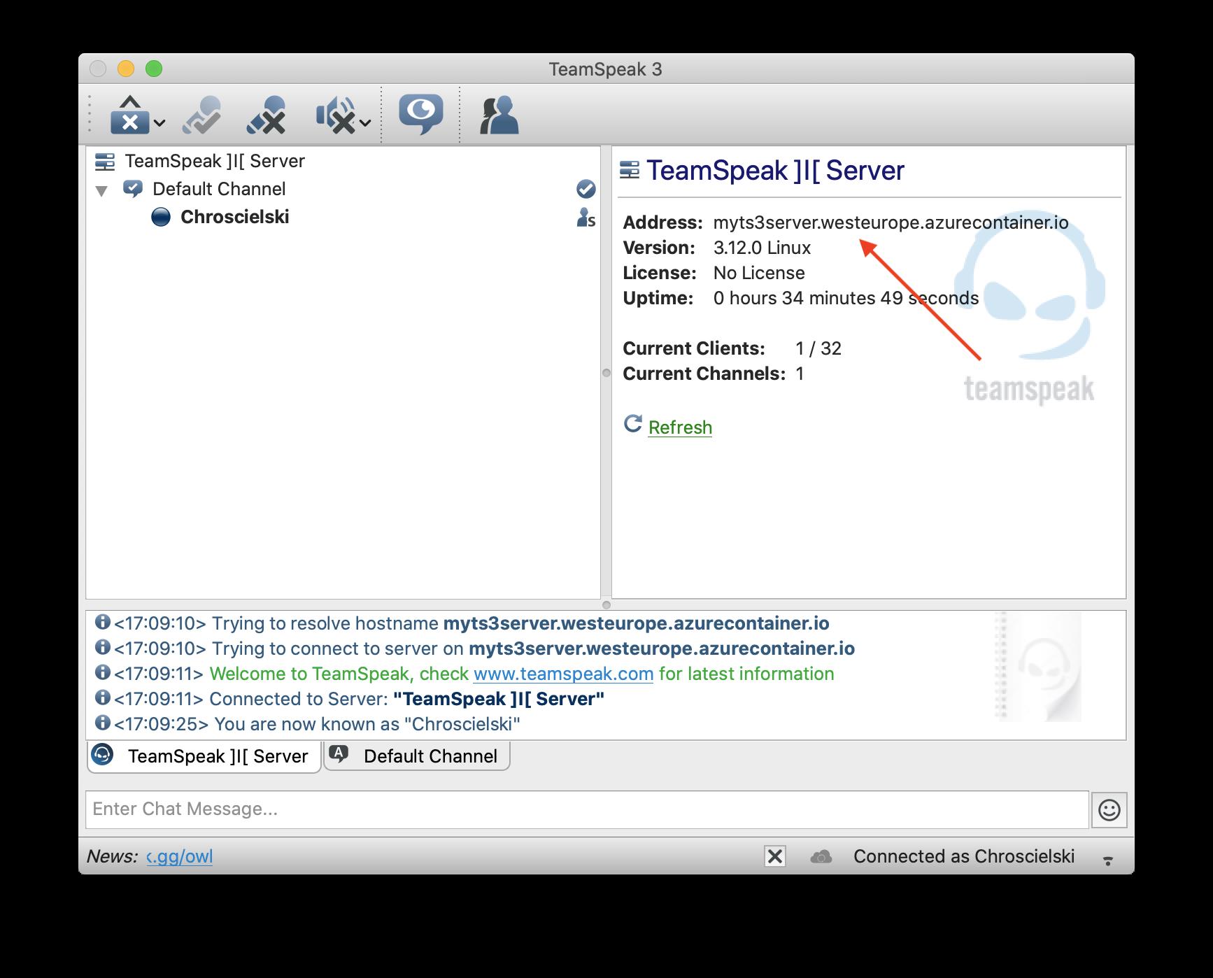 TeamSpeak 3 client window